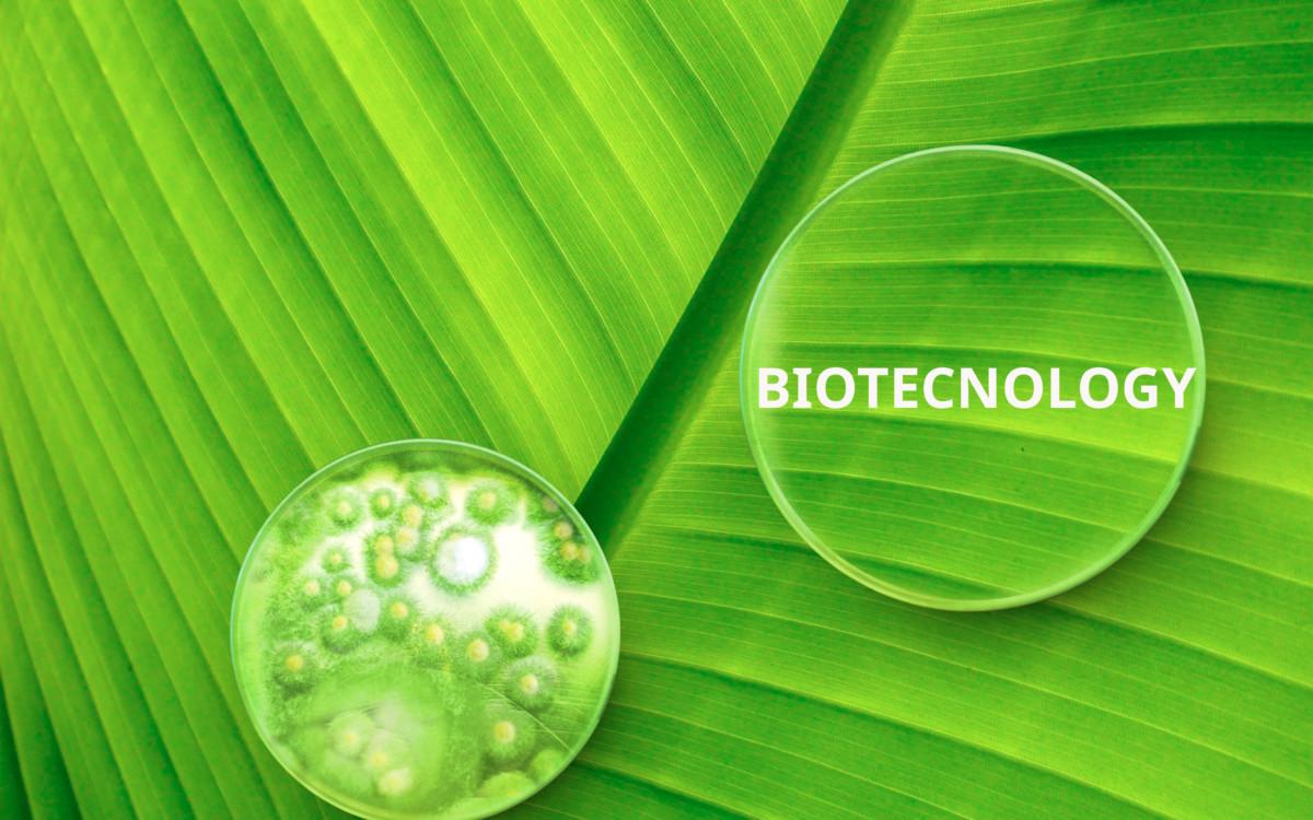 ¿Qué es la Biotecnología? Definición y aplicaciones