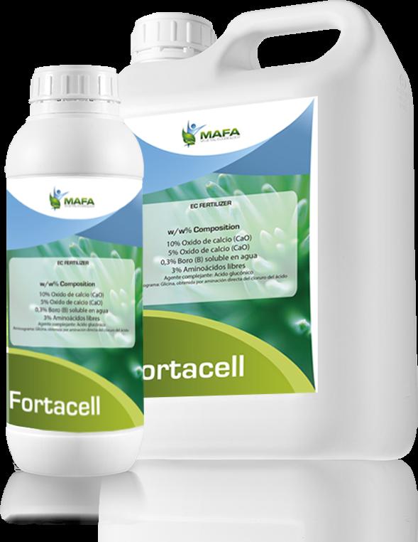 NEW BIOSTIMULANT Boron & Amino acids: FORTACELL – Blog MAFA
